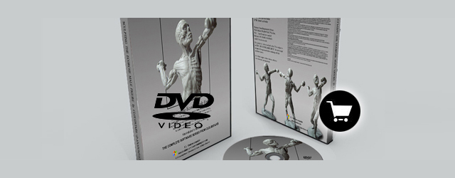 DVD : Sculpting the Ecorche Male